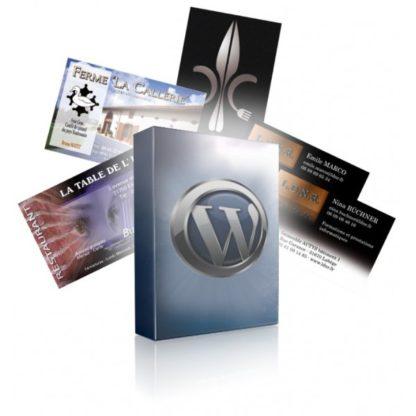 Pack site web + cartes de visite