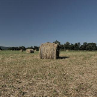 Panoramique sur champ et balles de foin